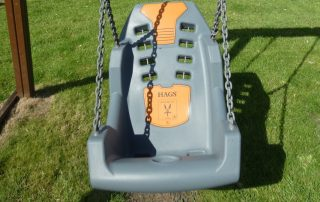 Mirage Disabled Swing Seat